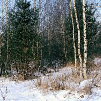 Зима в Колокше :: Виктория Трунова