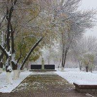 Зима... :: Светлана
