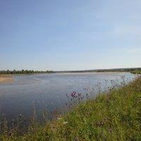 река Юг - в районе села Еремеево Великоустюгский район :: helga 2015