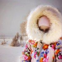 мороз :: раф