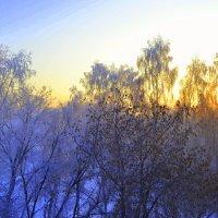 Манящий закат :: андрей Соколов