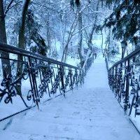 Талеж зимой :: Олег Сливанков
