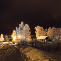морозно :: Олег Зима