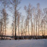 Природа Сибири 2 :: Ольга Рав