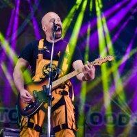 Woodstock :: tanya gordynska