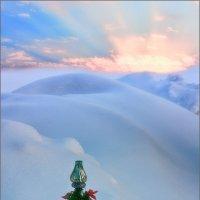 С Рождеством Христовым! :: Александр Никитинский