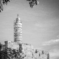Башня Давида :: Alevtina Zibareva