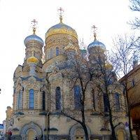 Церковь Успения Пресвятой Богородицы :: Вера Щукина