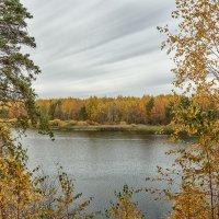 Осенние краски :: Александр Романов