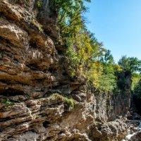 каньон реки Белая (Адыгея) :: Олеся Енина
