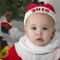 Новый год :: Oleg Akulinushkin
