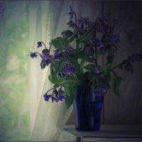 Летняя зарисовка :: Ольга Хлуднева