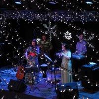 Концерт :: Владимир Шамирзаев
