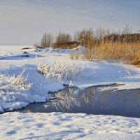 Зимушка-зима... :: Ирина Токарева