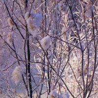 В царстве Деда Мороза-6 :: Антонида Михайлова
