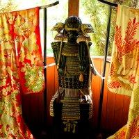 Прикид самурая :: Светлана