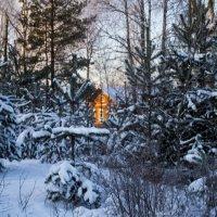 Домик в лесу. :: Ольга