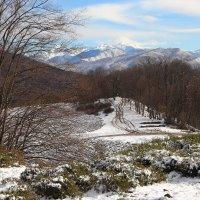 Вид на главный кавказский хребет. :: Larisa Gavlovskaya