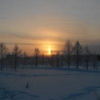 В дымке полярной ночи :: Ольга