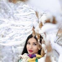 Долгожданная зима :: Алеся Корнеевец