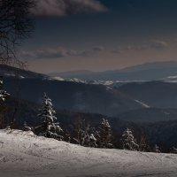 пейзаж :: Наталья Литвинчук