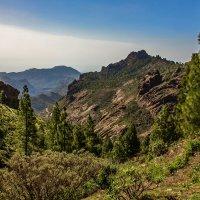 Spain 2015 Canary Gran Canaria 6 :: Arturs Ancans
