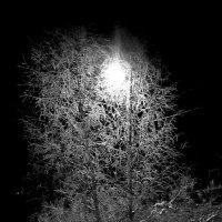 Ночные узоры. :: Михаил Попов