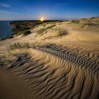 Мертвые дюны :: Sutkus Rolandas