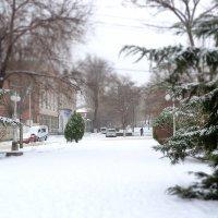 Первый снег в новом году :: Ольга Голубева