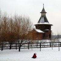 Кроха на снегу :: Владимир Болдырев
