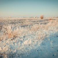 Зима :: Ирина Никифорова