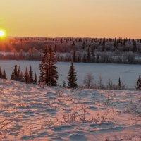 Долгожданное солнце!!! :: Олег Кулябин