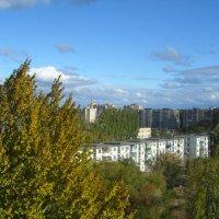 вид из моего окна :: Елена Шаламова