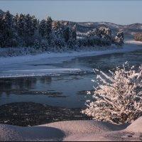 теплая зима... :: Наталья Маркова