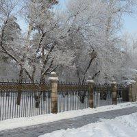 Зима в городе :: Галина