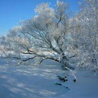 Холодно :: Юрий K...