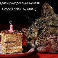 Очередной день рождения у меня)) :: Galina Belugina