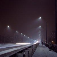 Балаково, ноый мост :: Елена Неведицына