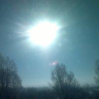Солнечный круг, небо вокруг. :: Елена Данилычева