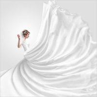 Свадьба студия :: Павел Стешин