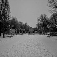 Зимний  Парк :: Иван Синицарь