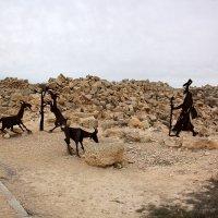 Авдат - древний город Набатеев в пустыне Негев :: vasya-starik Старик