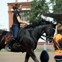 черный черный,но конь :: Олег Лукьянов