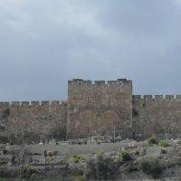 г.Иерусалим :: Надежда
