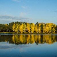 Осень. :: Андрей Боталов