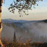 А по утрам туманы стелются ... :: Сергей Чиняев