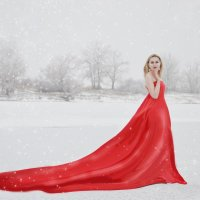 на белом покрывале января :: Olga Gushcina