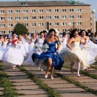 Вперед, за женихами! :: Оксана Дементьева