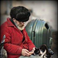 Два одиночества... :: Юрий Гординский