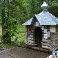 Часовенка в лесу :: Ирина Бархатова